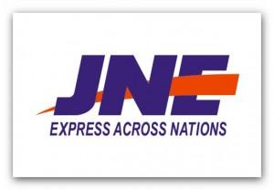 Logo JNE Vector