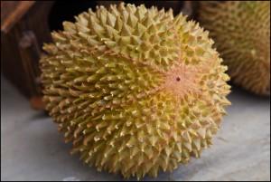 Khasiat Kulit Durian Yang Lezat